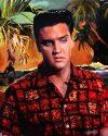 Elvis Art by Betty Harper - Blue Hawaii
